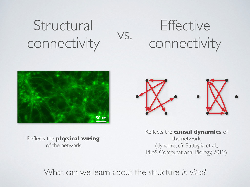 vs. Structural connectivity Effective connectiv...