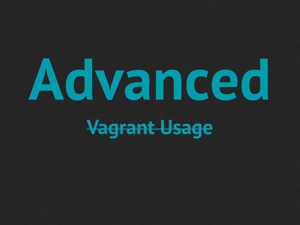 Advanced Vagrant Usage