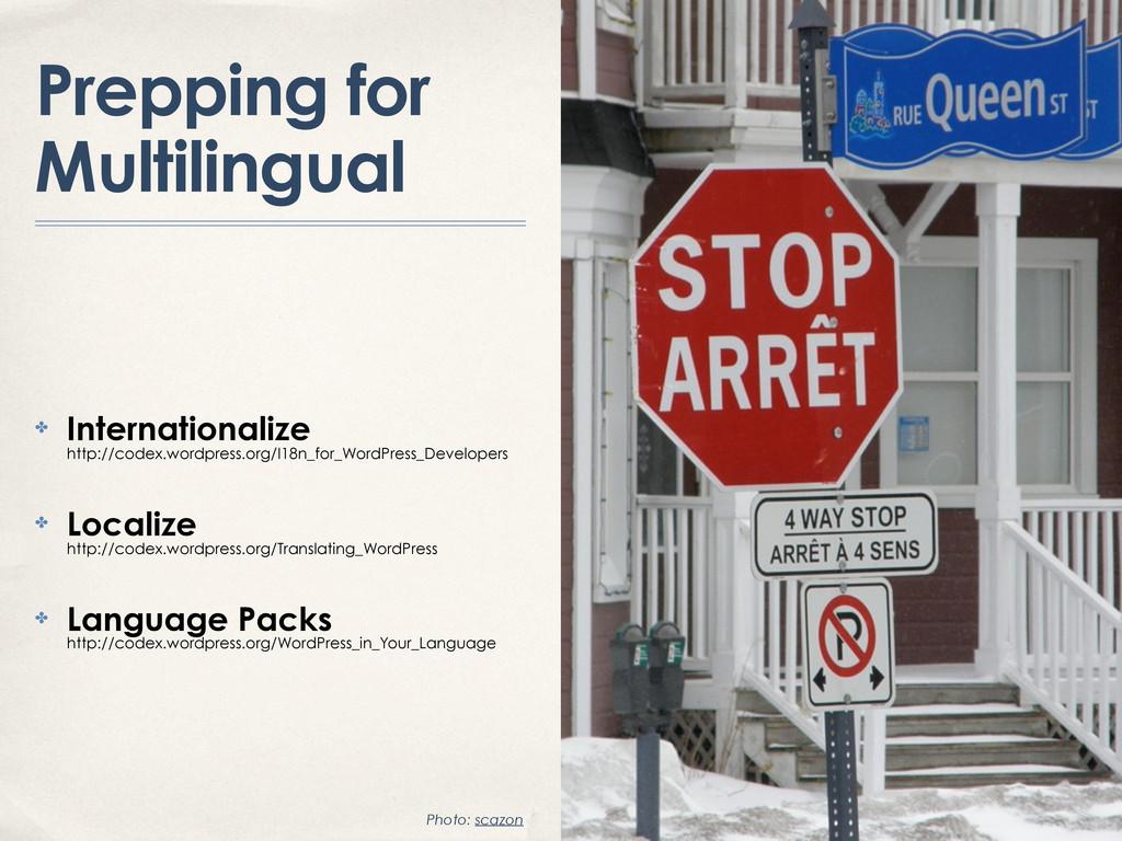 Prepping for Multilingual ✤ Internationalize ht...