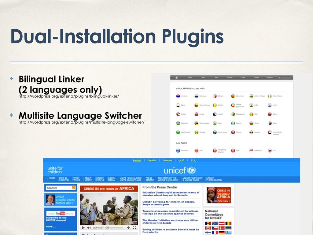 Dual-Installation Plugins ✤ Bilingual Linker (2...