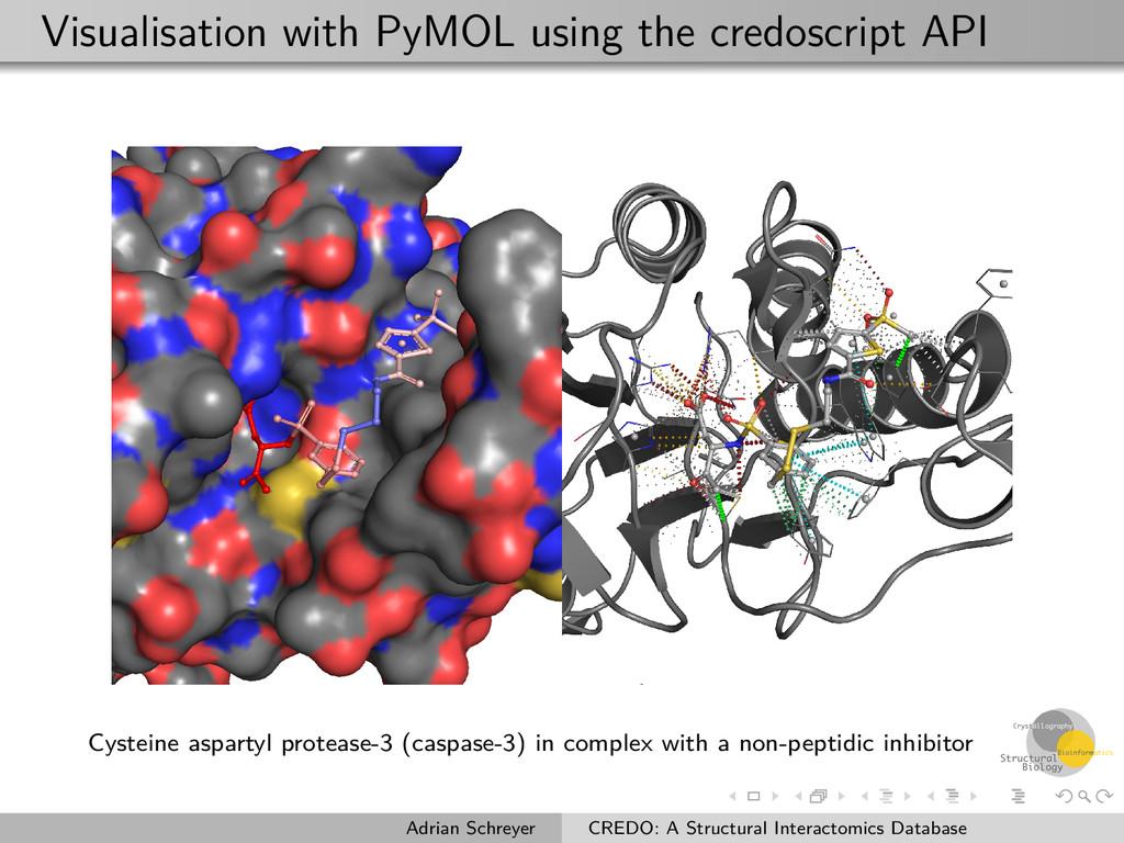 Visualisation with PyMOL using the credoscript ...