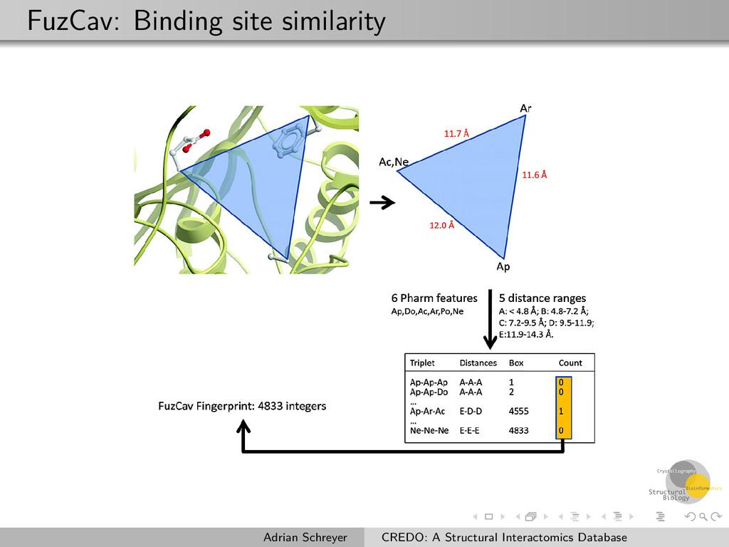 FuzCav: Binding site similarity Adrian Schreyer...