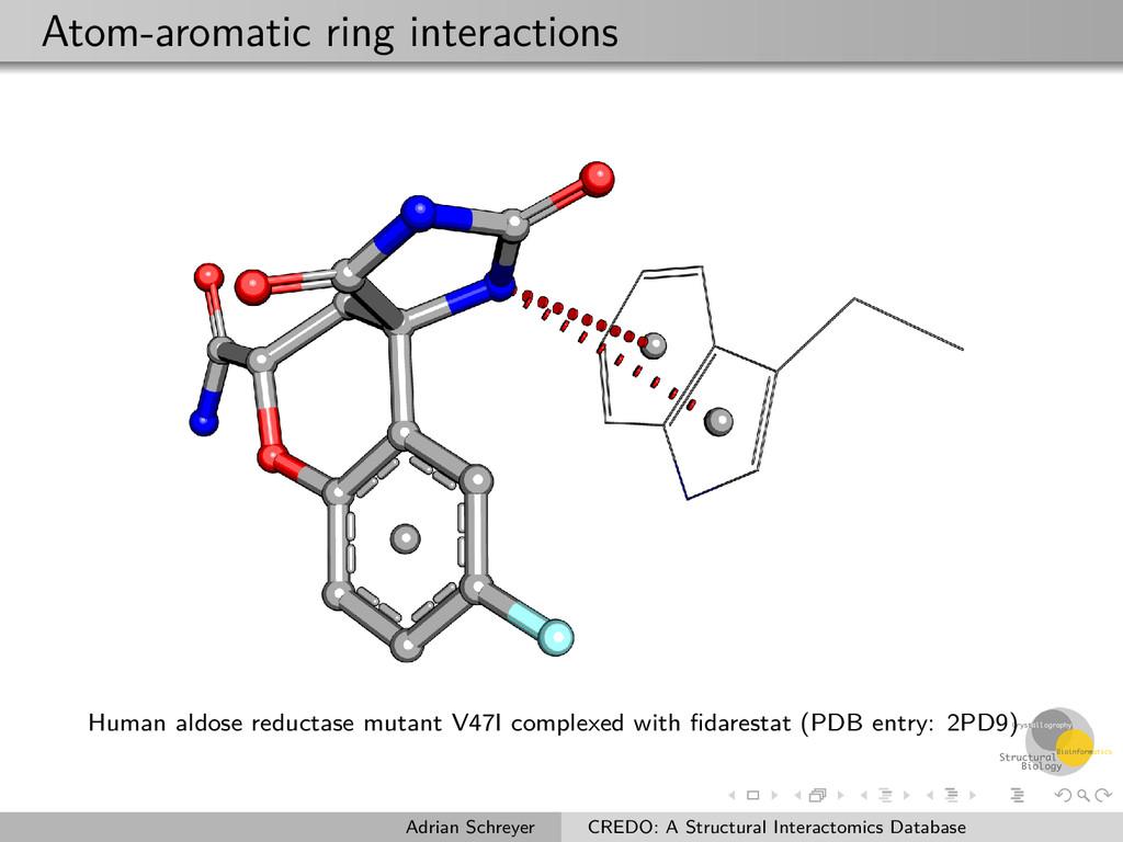 Atom-aromatic ring interactions Human aldose re...