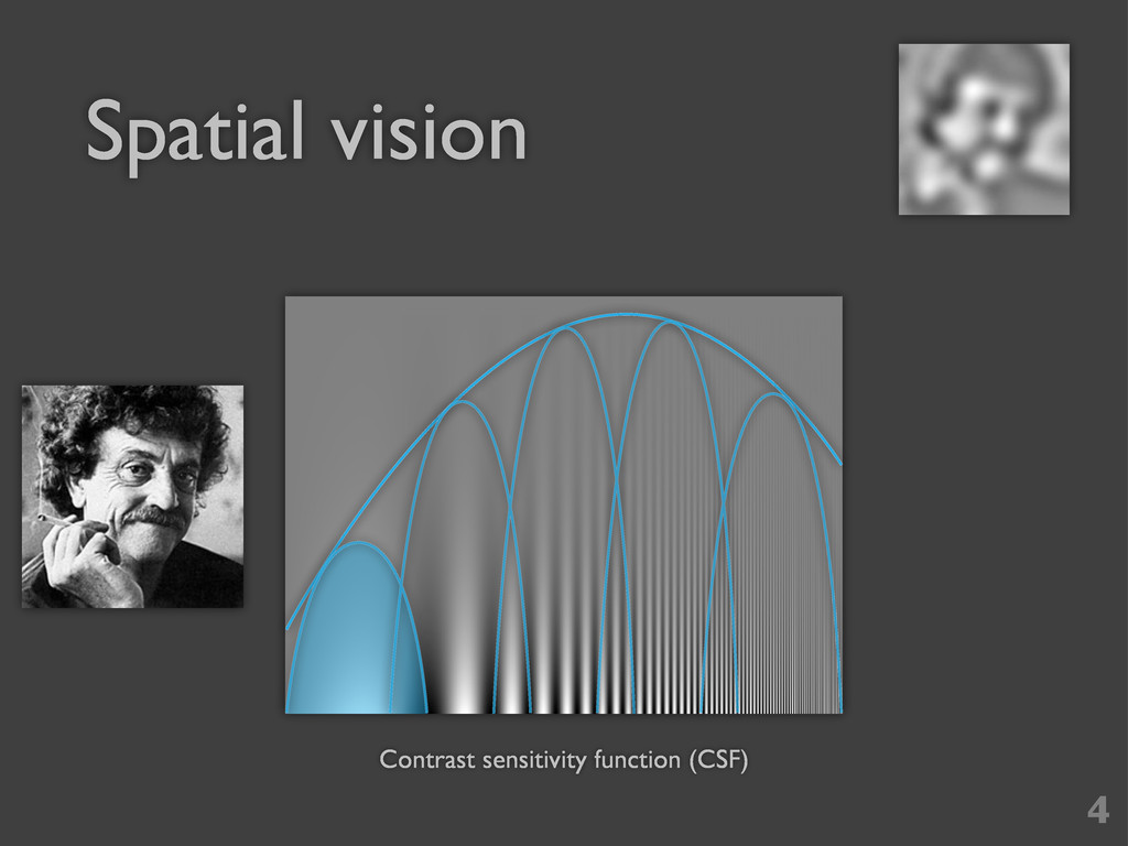 Spatial vision 4 Contrast sensitivity function ...