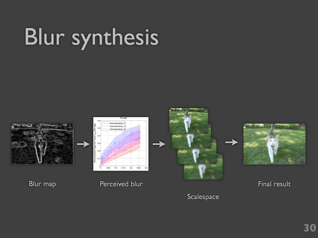 Blur synthesis 30 Blur map Final result Scalesp...