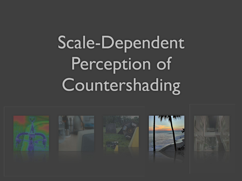 Scale-Dependent Perception of Countershading
