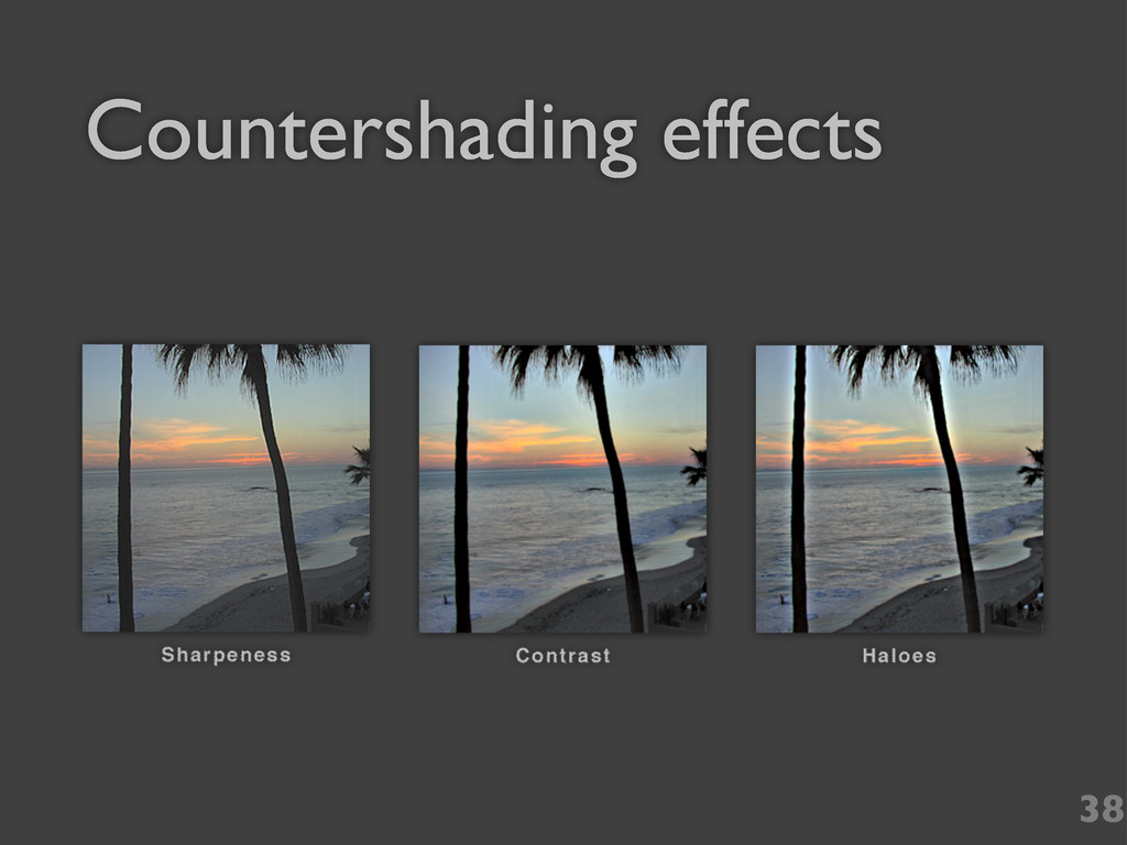 Countershading effects 38