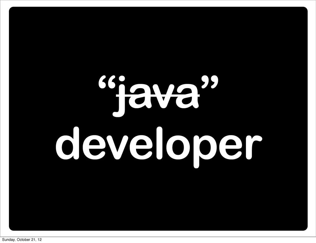"""java"" developer Sunday, October 21, 12"