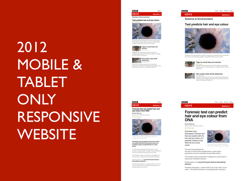 2012 MOBILE & TABLET ONLY RESPONSIVE WEBSITE