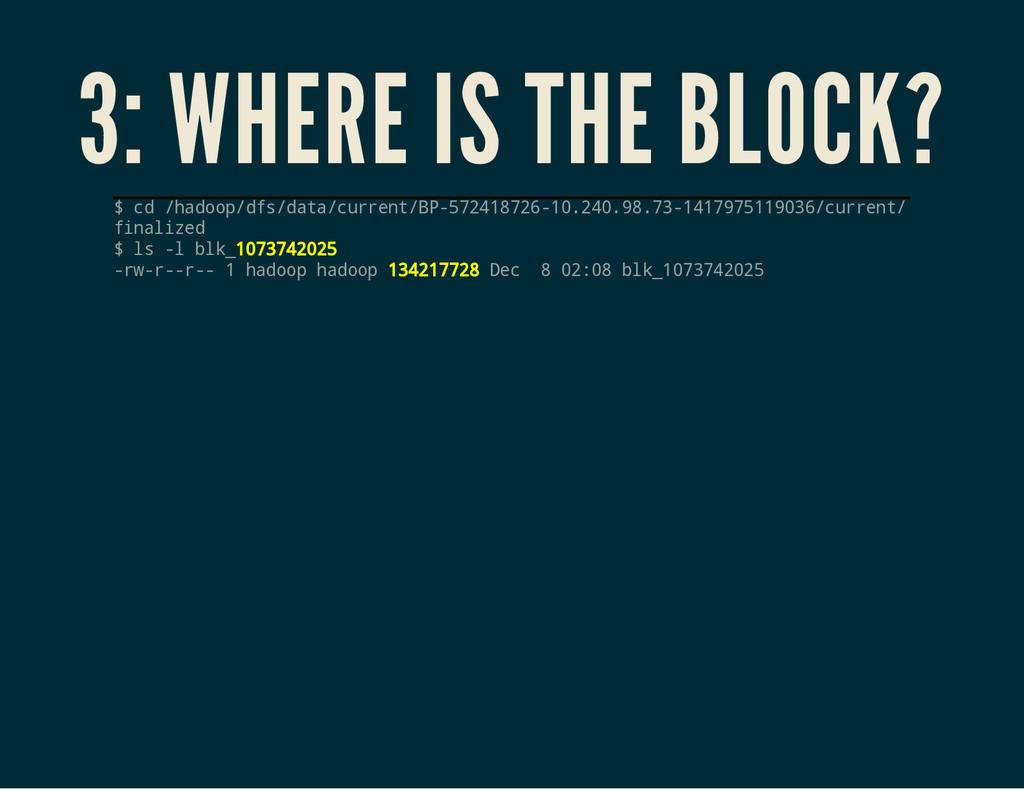 3: WHERE IS THE BLOCK? $ c d / h a d o o p / d ...