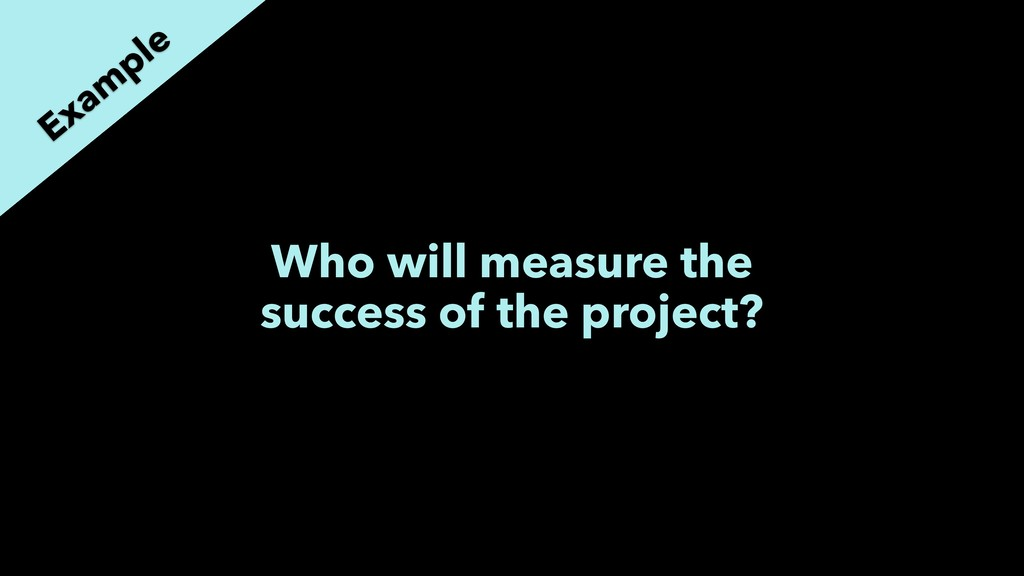 Who will measure the success of the project? Ex...