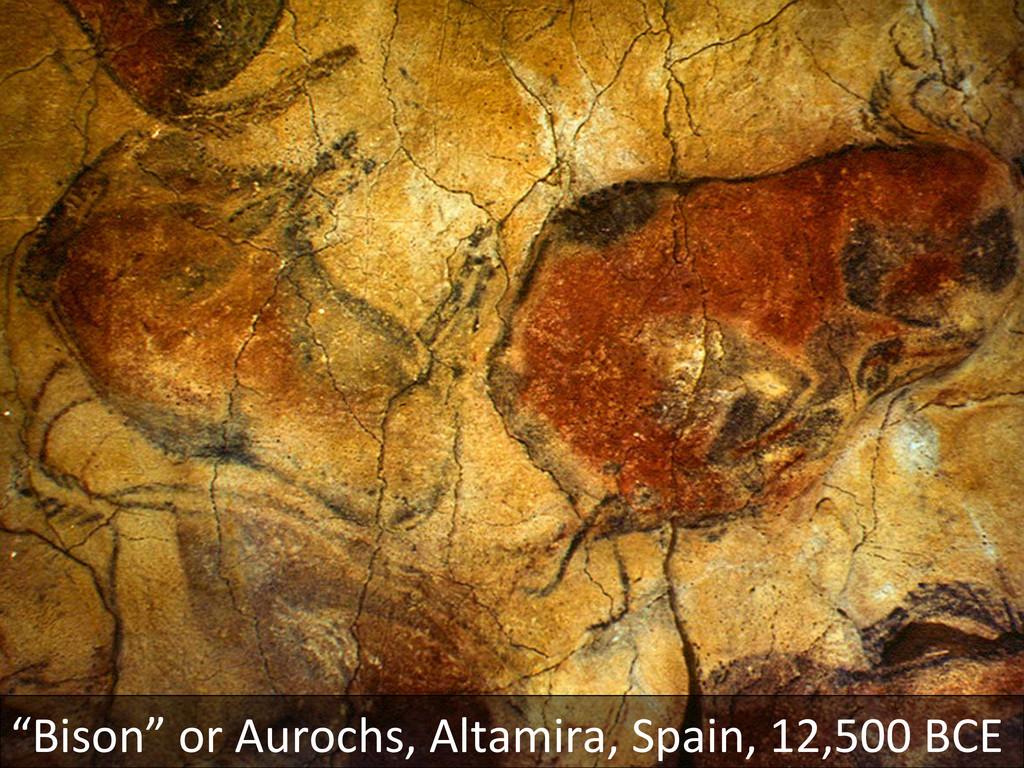 """""""Bison"""" or Aurochs, Altamira, Spain..."""