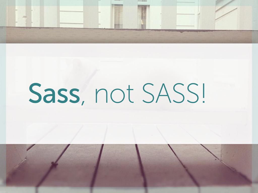 Sass, not SASS!
