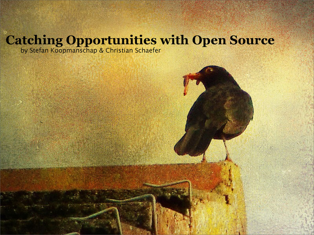 Catching Opportunities with Open Source by Stef...