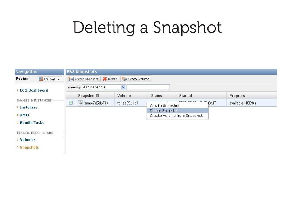 Deleting a Snapshot