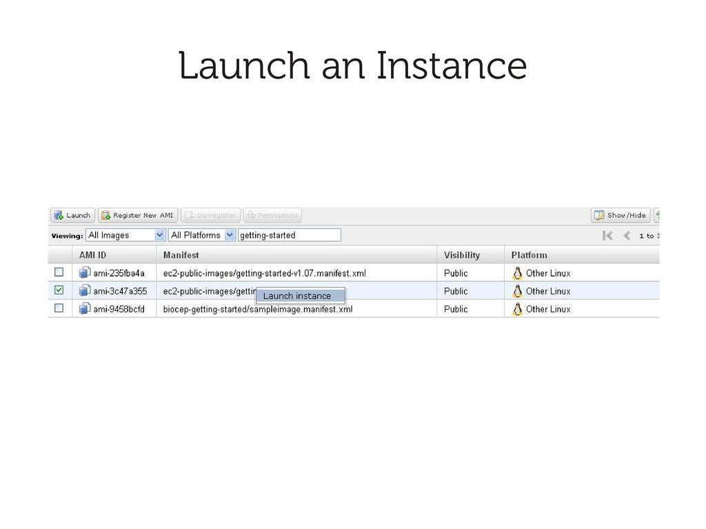 Launch an Instance