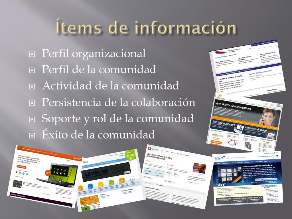 ¨ Perfil organizacional ¨ Perfil de la comu...