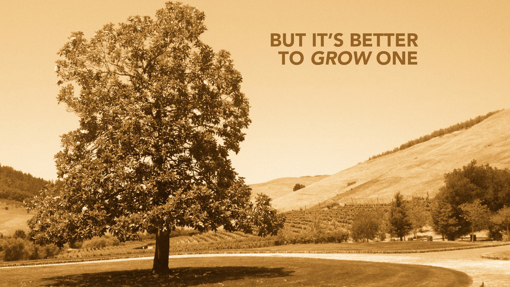 BUT IT'S BETTER TO GROW ONE