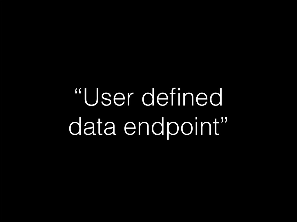 """""""User defined data endpoint"""""""