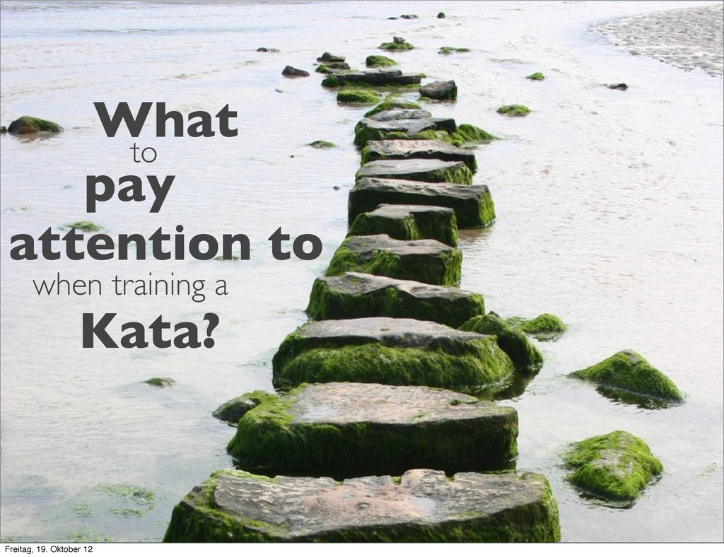 What to pay attention to when training a Kata? ...