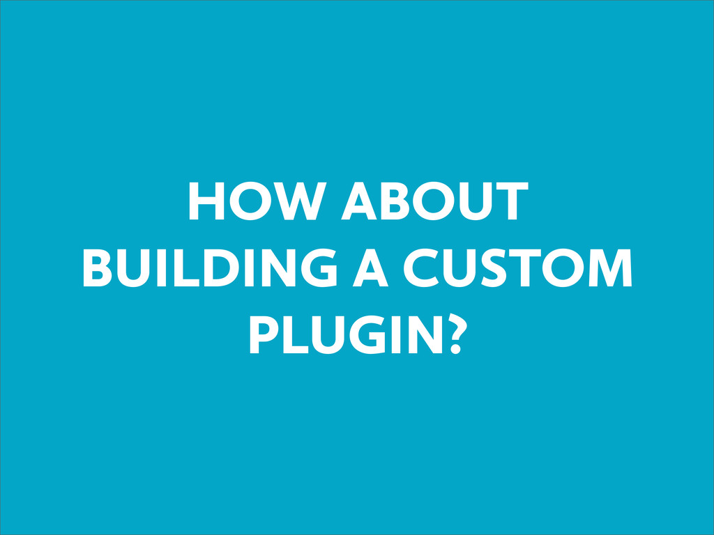 HOW ABOUT BUILDING A CUSTOM PLUGIN?