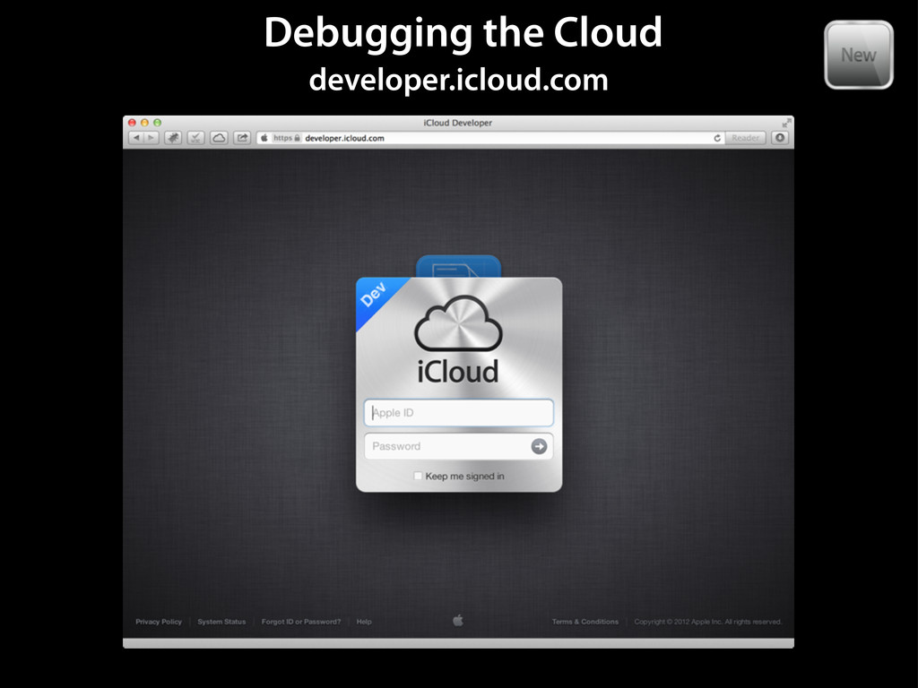Debugging the Cloud developer.icloud.com