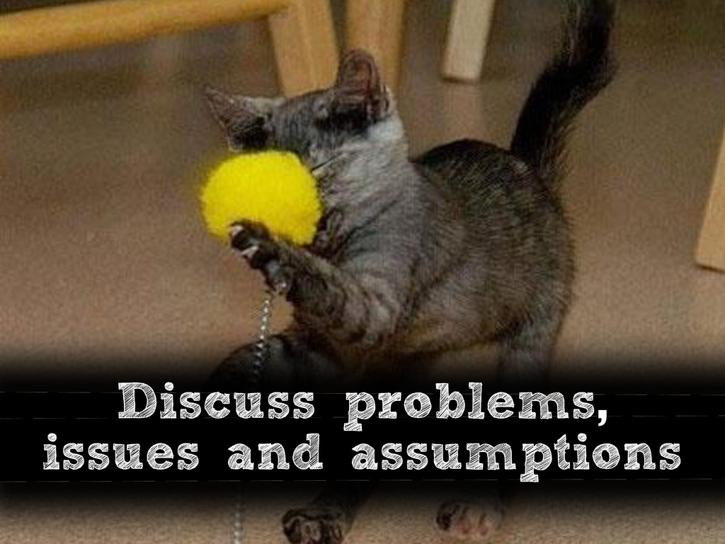 Discuss problems, issues and assumptions