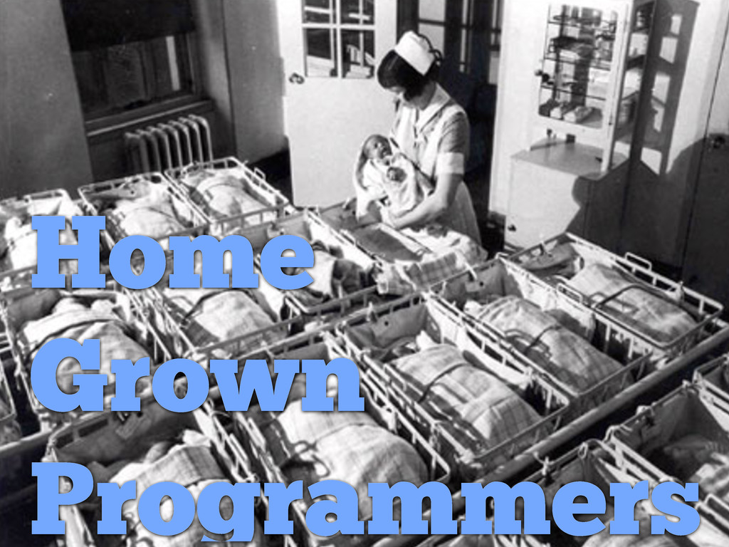 Home Grown Programmers