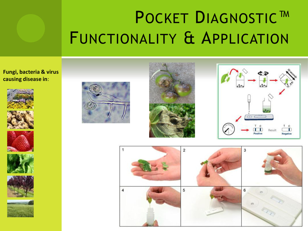 POCKET DIAGNOSTIC™ FUNCTIONALITY & APPLICATION ...