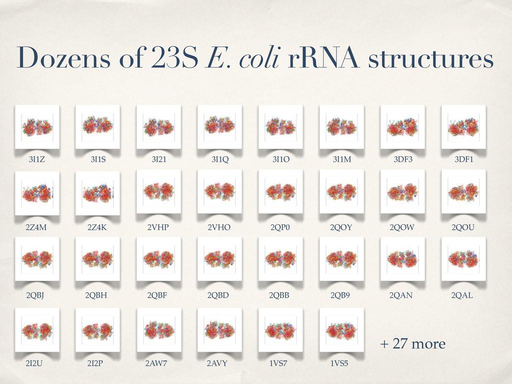 Dozens of 23S E. coli rRNA structures + 27 more...
