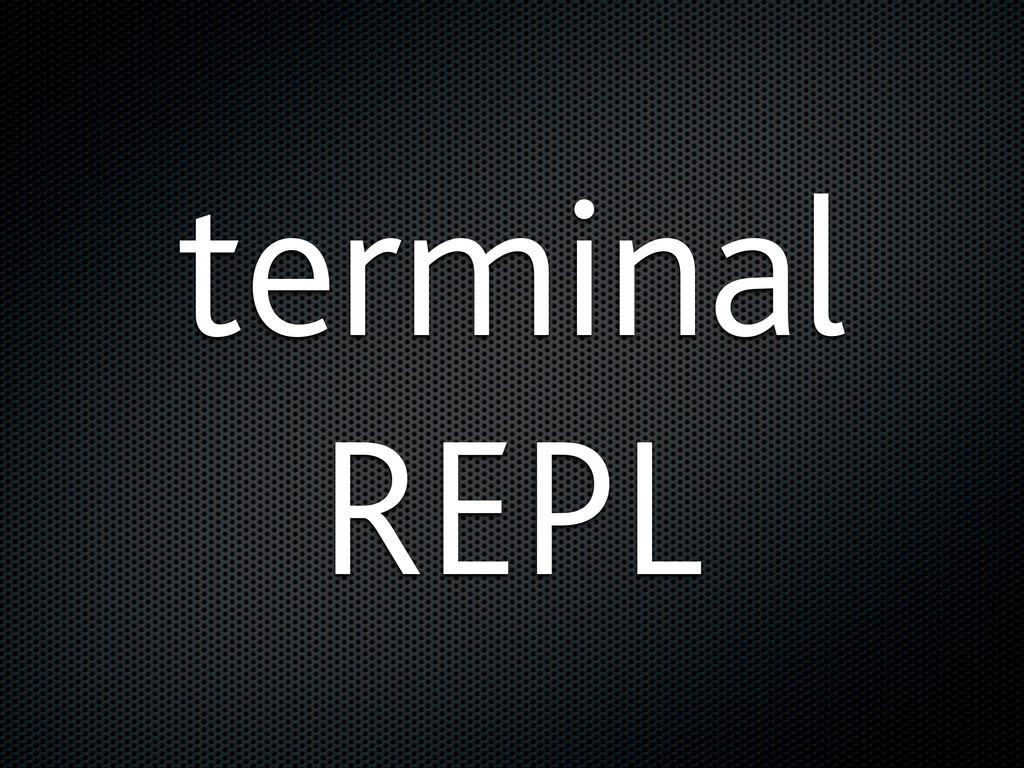 terminal REPL