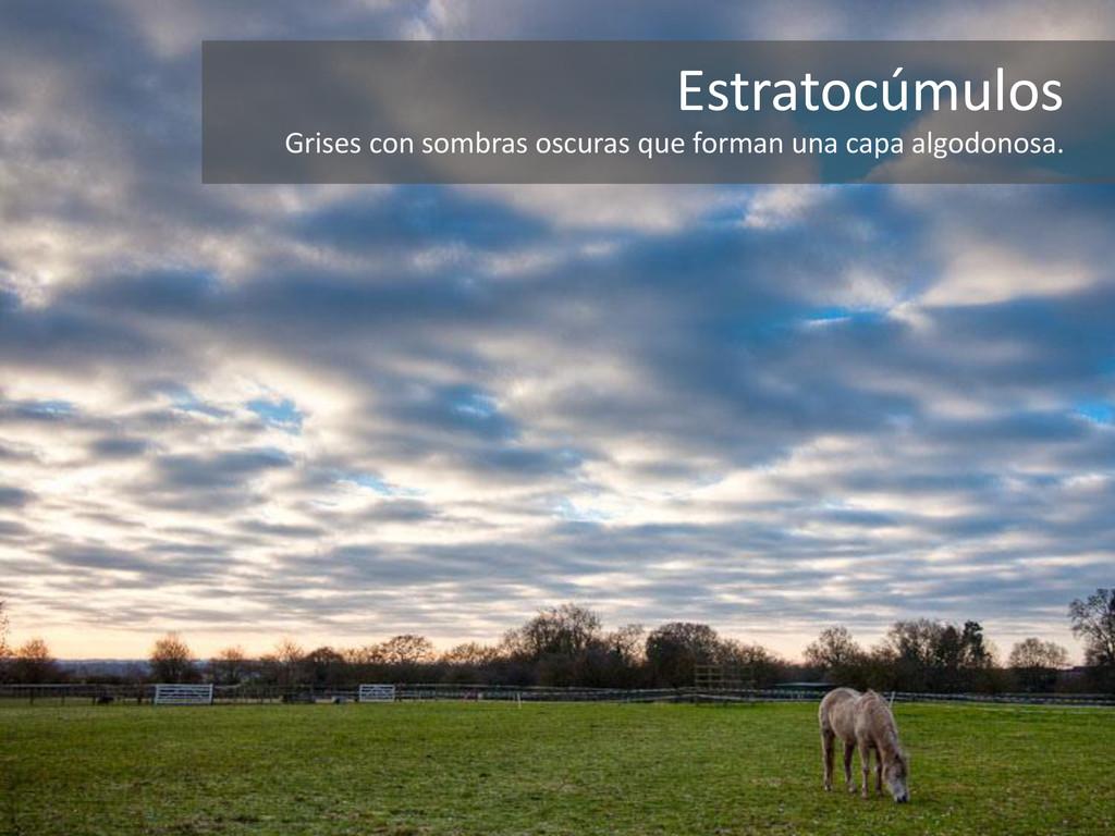 Estratocúmulos Grises con sombras oscuras que f...