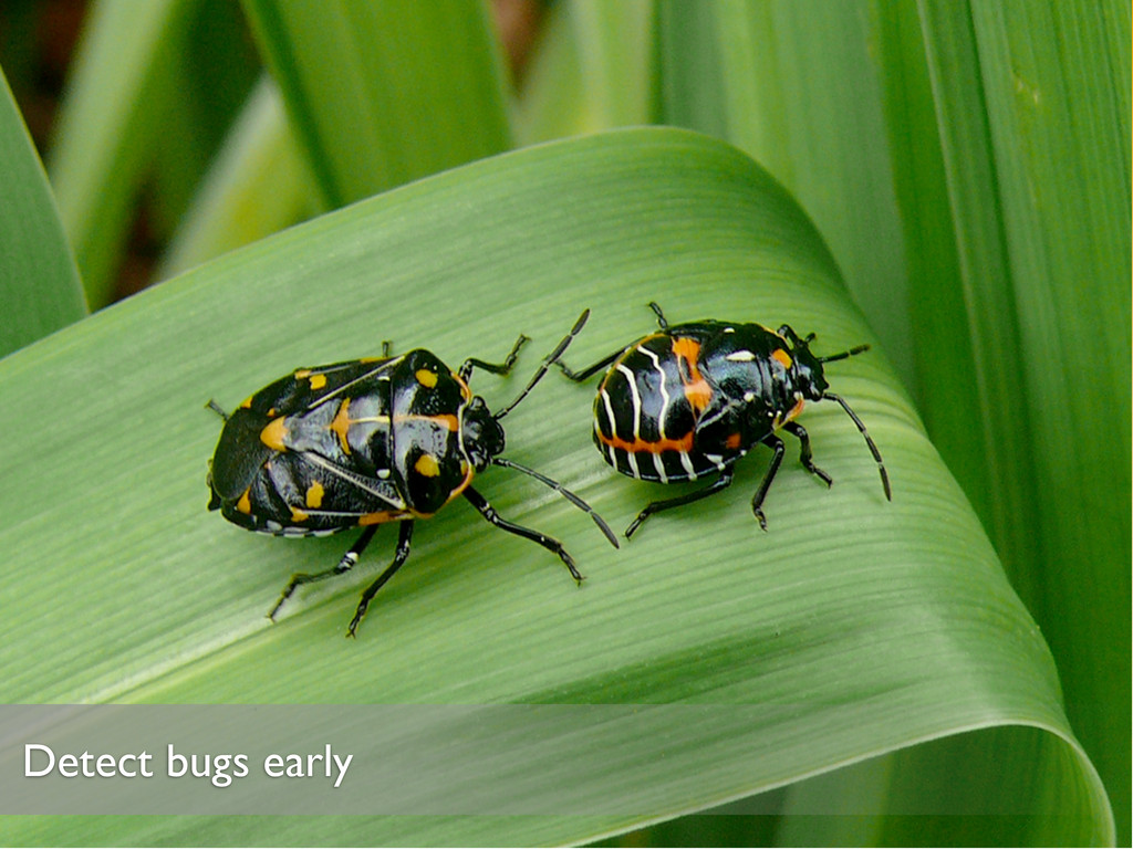 Detect bugs early