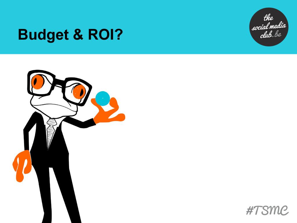 Budget & ROI?