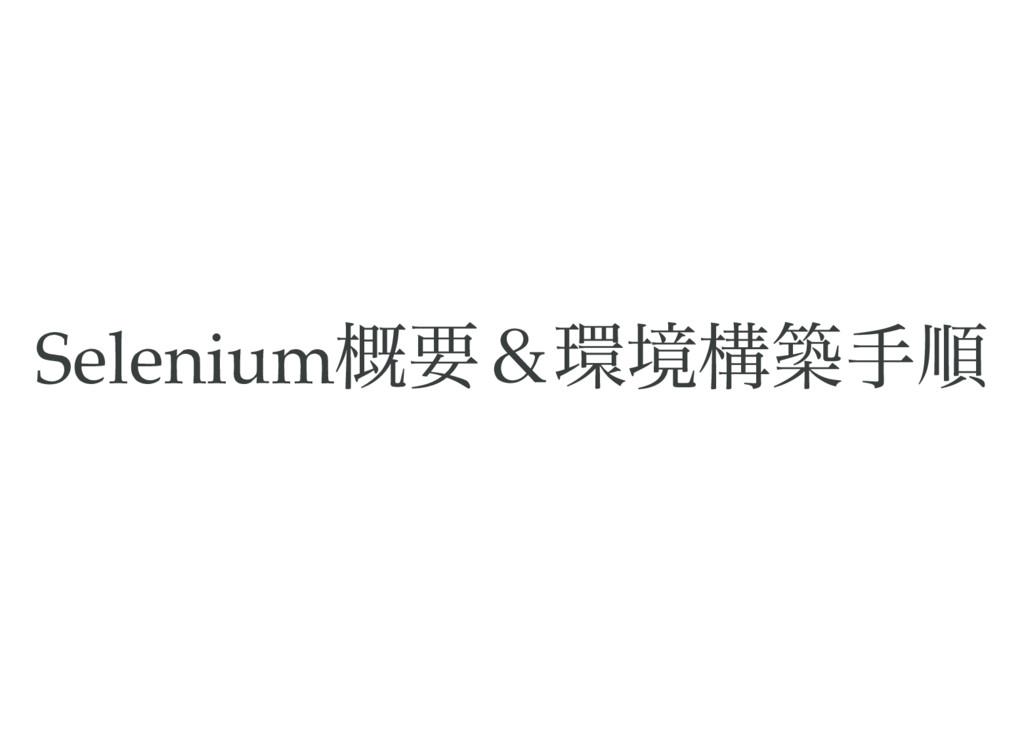 Selenium 概要&環境構築手順
