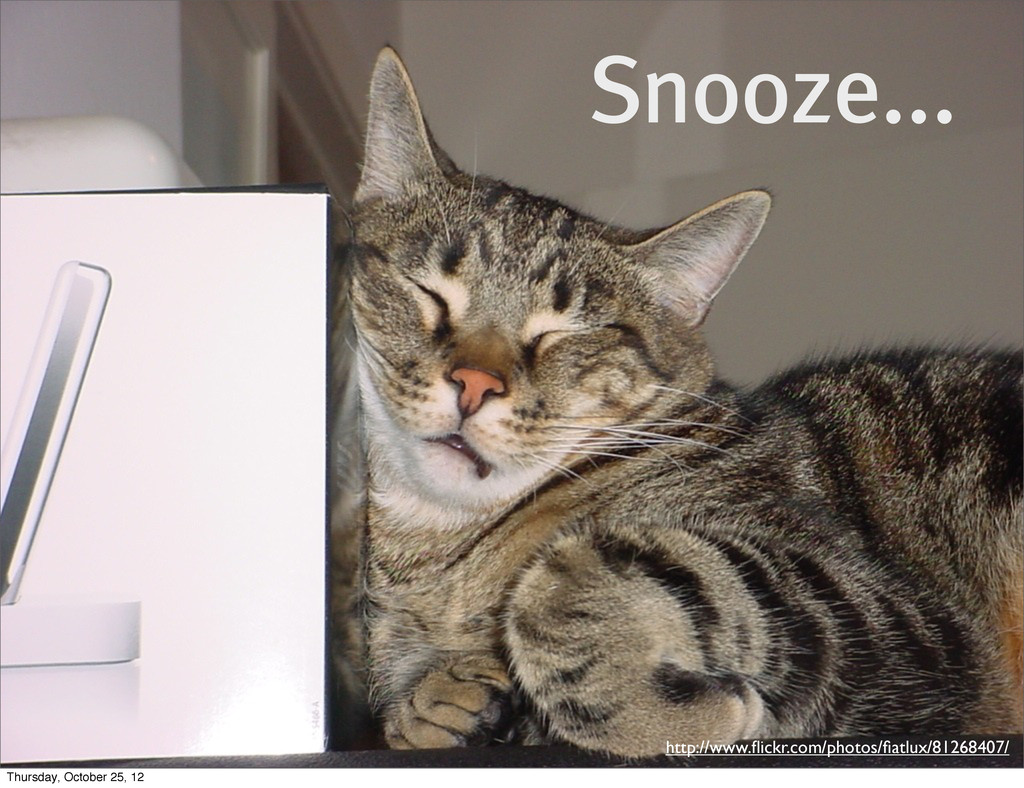Snooze... http://www.flickr.com/photos/fiatlux/81...