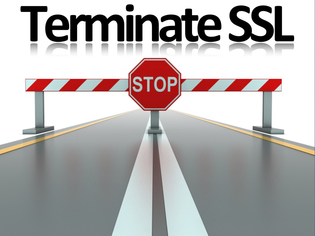 Terminate SSL