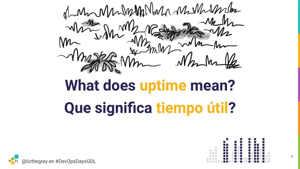 @lizthegrey en #DevOpsDaysGDL What does uptime ...
