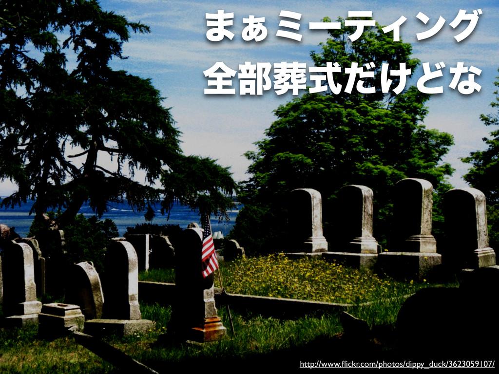http://www.flickr.com/photos/dippy_duck/36230591...