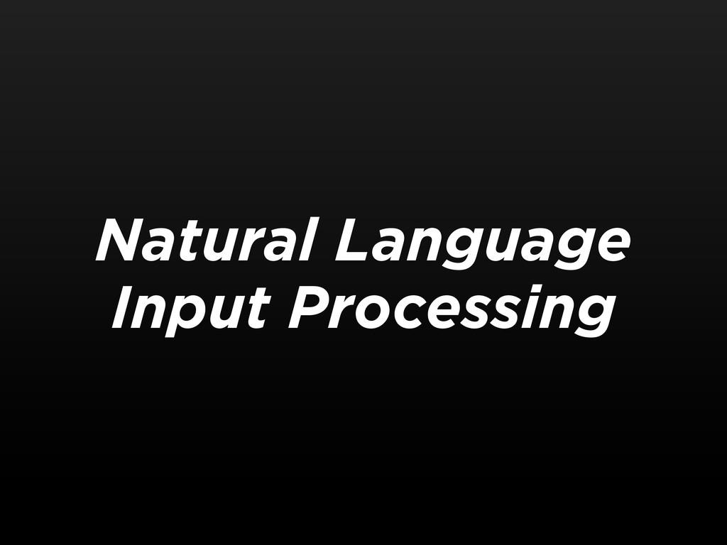 Natural Language Input Processing