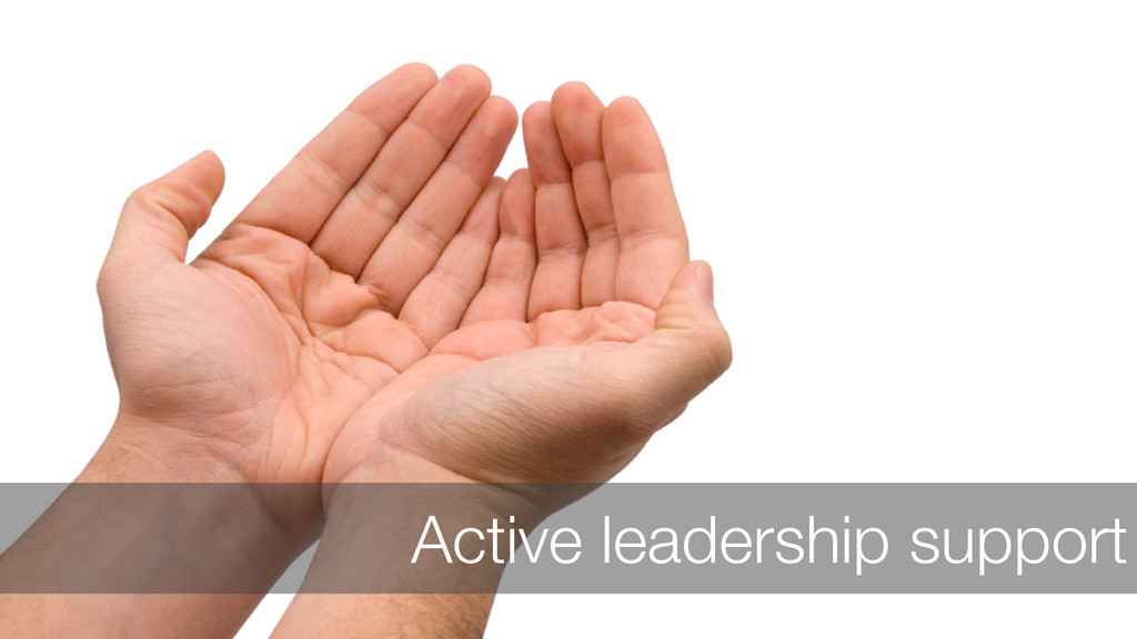 Active leadership support