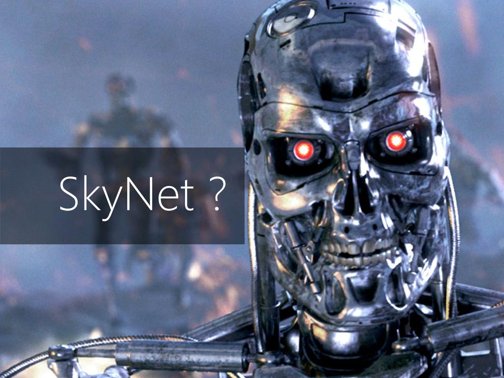 1.197 bytes de header SkyNet ?