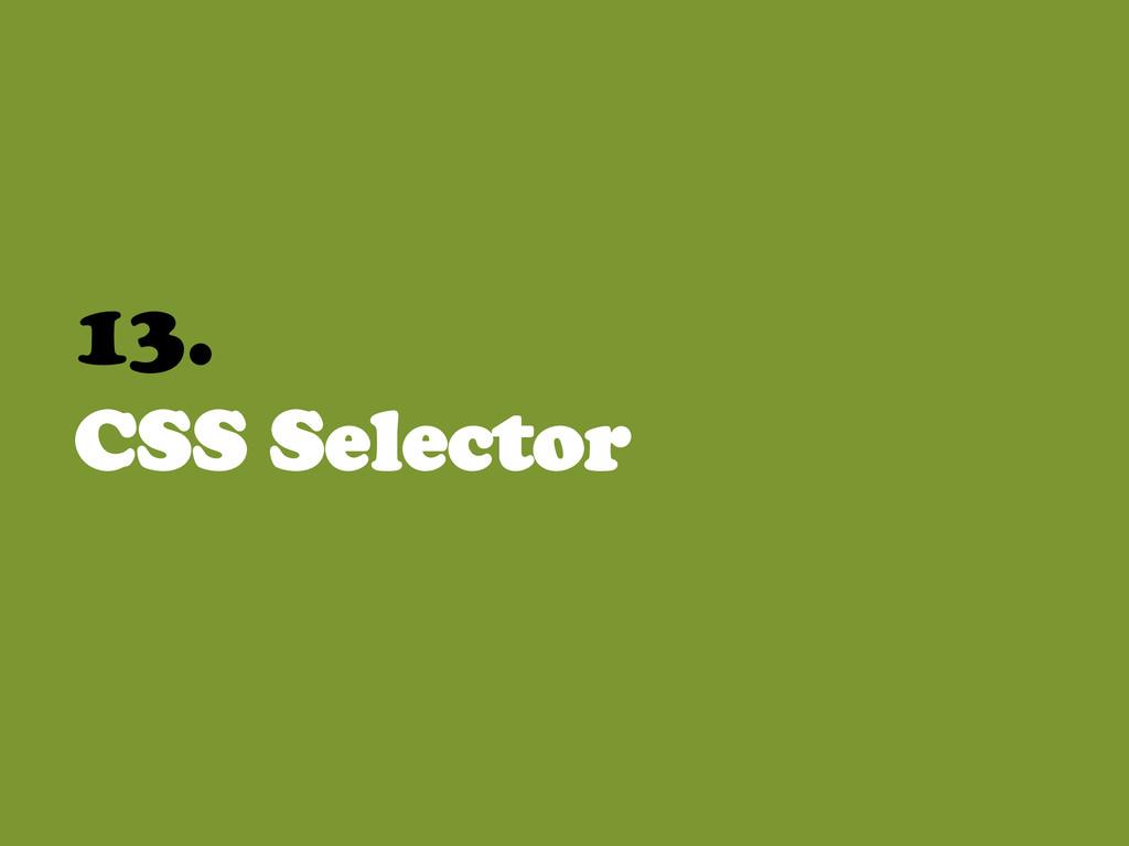 13. CSS Selector