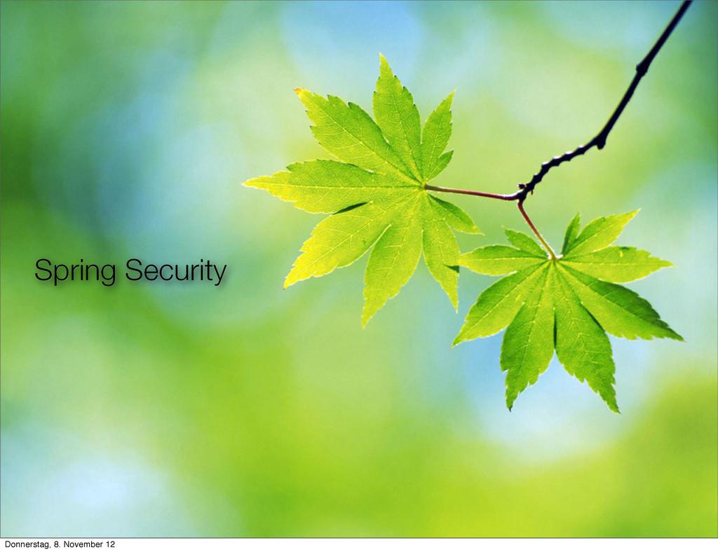 Spring Security Donnerstag, 8. November 12