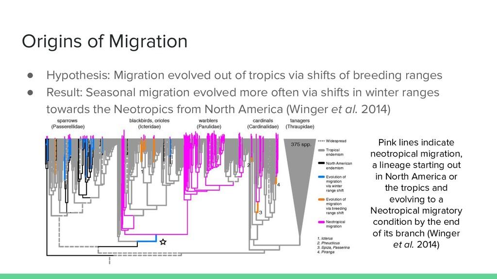 Origins of Migration ● Hypothesis: Migration ev...