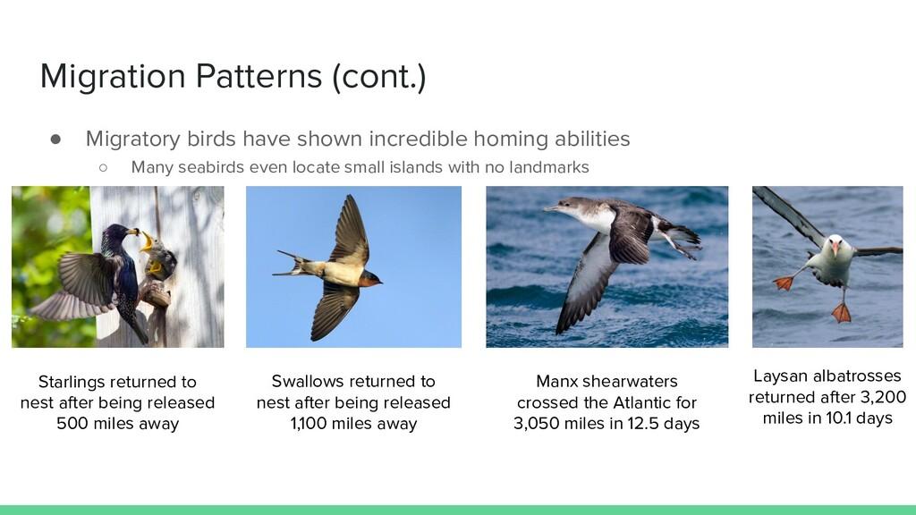 Migration Patterns (cont.) ● Migratory birds ha...