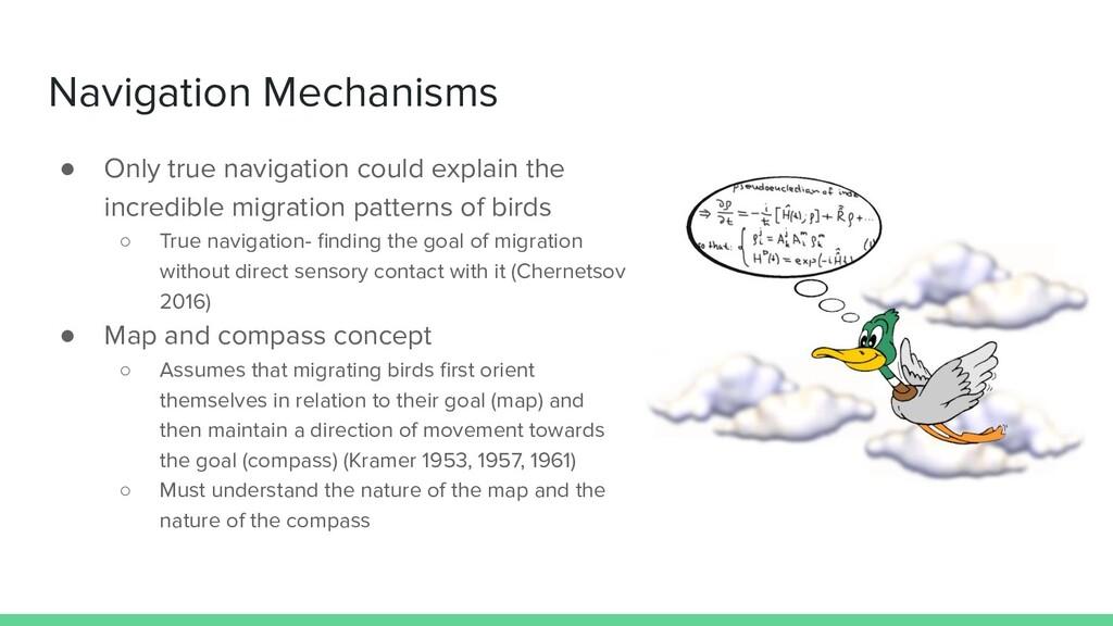 Navigation Mechanisms ● Only true navigation co...