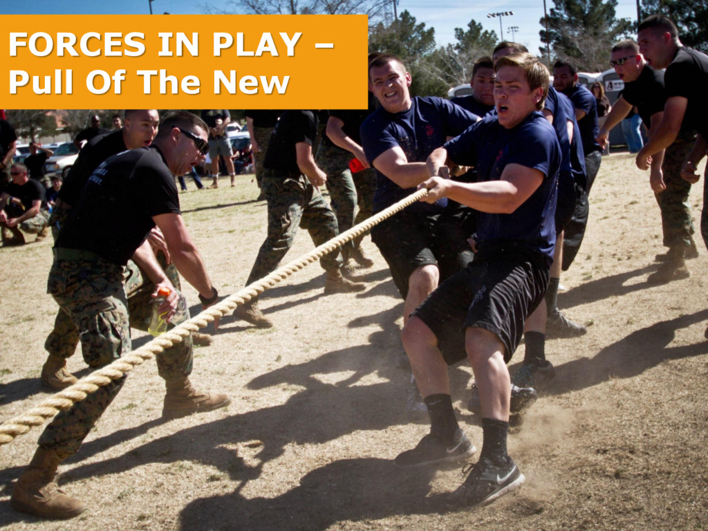 FORCES IN PLAY – Pull Of The New
