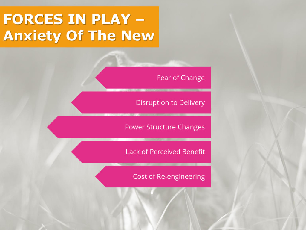 FORCES IN PLAY – Anxiety Of The New Fear of Cha...