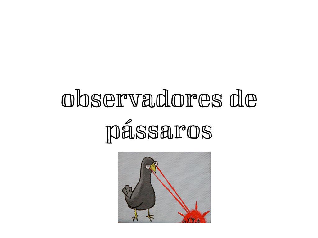 observadores de pássaros